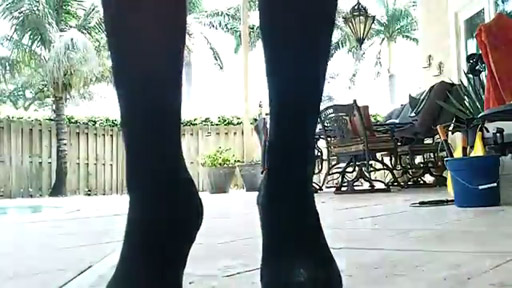 Zapatos de caballo