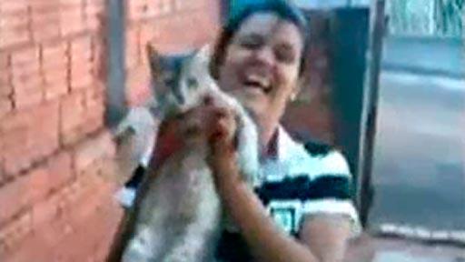 Una foto con el gatito