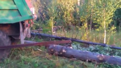 Cargando árboles