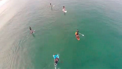 Surfista suertudo