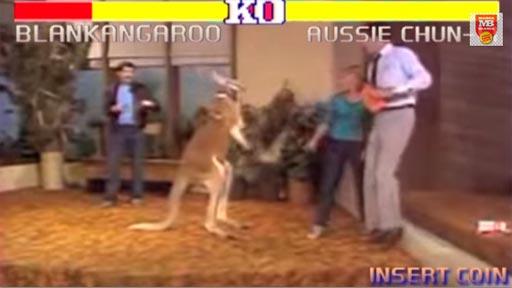 Street Fighter Kangaroo