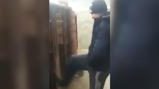Tonto en una perrera