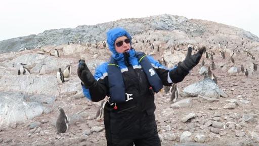 La reacción de los pingüinos al escuchar ópera