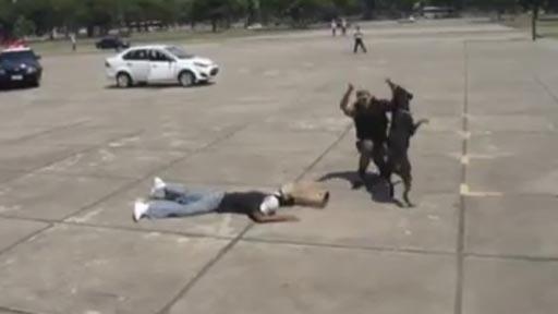 Policía brasileña preparada para los Juegos Olímpicos