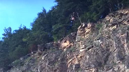 Saltar al agua desde un acantilado