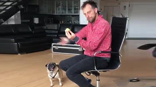 La reacción del perro a un truco de magia