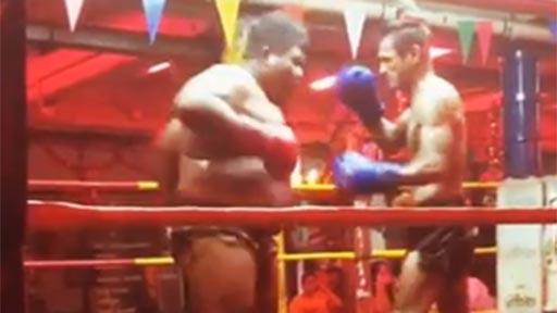 Boxeo tailandés: delgado Vs gordo